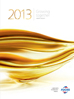 Cover of the Annual Report 2013 of FUCHS PETROLUB SE